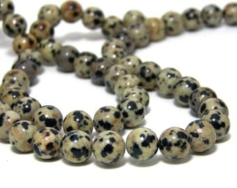 Dalmatian Jasper beads, 8mm round gemstone, full or half strands available  (535S)