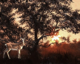 Whitetail Deer wildlife animal 24x36 (61 x 91.4 cm) oils on canvas by RUSTY RUST / D-174