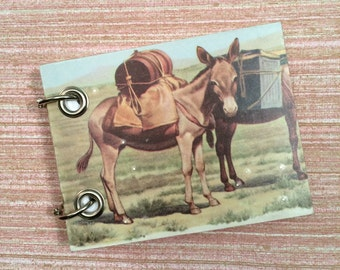 Recycled Notebook - Small Refillable Notepad - Mule  - Upcycled Children's Book