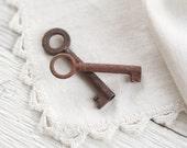 Small Antique Keys - Two Old Rusty Metal Cabinet Keys