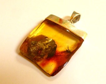 """Baltic Amber Jewelry Pendant with Fossil Insect Fly Natural Untreated Yellow 2.1"""" 13.2 gram 925 Silver"""