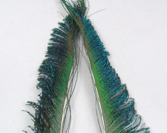 2 Peacock sword feathers peacock feathers craft feathers