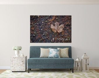 Photographic Wall Art - Oh Canada - Maple Leaf - Aluminum Metal print ready to hang - Fine Art Photography