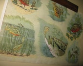Vintage 1930s Science Print of Fish in Their Habitat Old School Chart Vibe Glorious Mellow Shades More for Pair, Grouping, Vtg Hanger Option