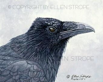 NOTE CARD, Ravens, bird decor, note cards, Ellen Strope, castteam, home decor,bird cards, wildlife, birds, bird art