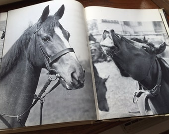 French Horse Book, Equine Manual, Horsecare Guidebook, Guide For Horse care, 1962 Vintage Book, Horse pictures