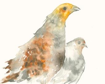 Partridges Original Watercolor Painting