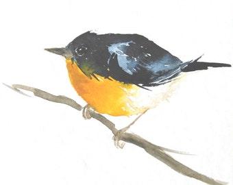 Original Bird Watercolor Painting Dark Blue and Yellow Bird