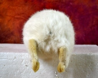 """taxidermy of  rabbit ,bunny buttock ,named """"kiss this"""", joke gift,friendly gift F#"""