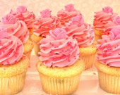 Vanilla with Pink Butter Cream - Valentine's Day, Birthday, Wedding or Anniversary - 1 Dozen Cupcakes - Local Charleston Area Pickup Only