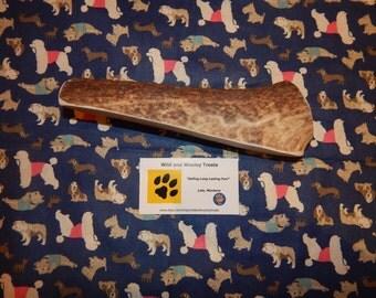 "Organic Jumbo Elk Antler Dog Chew Split ""Made in Montana"" (Lot J22)"