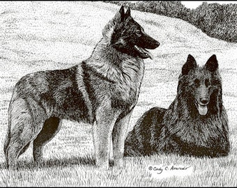 Belgian Tervuren and Belgian Sheepdog, Limited Edition Print by Cindy Alvarado