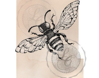 Hand Drawn Bee Print