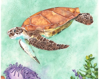 Sea Turtle print ST1316, sea turtle watercolour painting, Contemporary Coastal wall art, green wall art, 5 by 7 print underwater scene