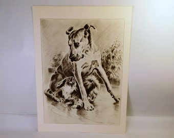 Vintage GREAT DANE & PEKINGESE - Cairn Terrier - Dog Book Art Print - Dennis Morgan - Authentic 1940's - Collectible