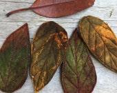 Autumn Leaf  hair grips-hair grips-wedding accessory-leaf hair accessory-fairy accessory-hair decoration-autumn leaves