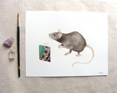 ORIGINAL // Critters and Cards: Rat // Watercolor and Pen