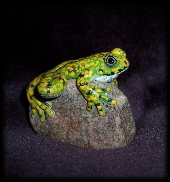 Cool little frog on a rock sculpture, big eyed tree frog