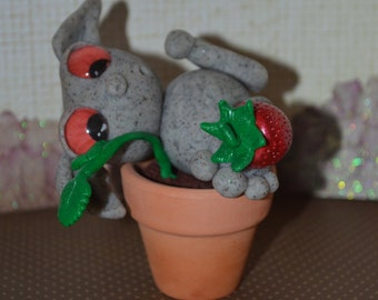 Strawberry Rox