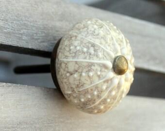 Nautical Knob Cream Gray And Brass Ceramic Knob Cabinet Knob Dresser Knob  Rustic