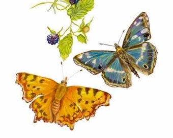 ORIGINAL DRAWING of Butterflies with Brambles Art Print, Nature Scene combining symbols of hope, health, freedom & fall. Butterfly Wall Art.