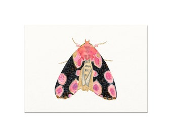 Moth Watercolor Art Print. Pink Moth Wall Art. Modern Nature Painting. Moth Painting. Unique Kids Room Art. Baby Shower Gift. Pink Moth Art.