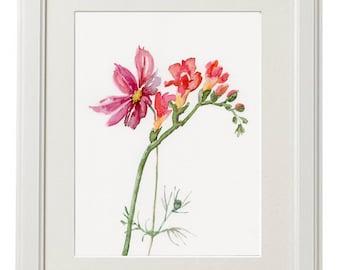 Freesia Flowers WATERCOLOR original, Fresia and Cosmos flower, botanic painting original