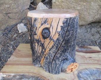 Naturally Weathered Bristlecone Pine Wood Urn / Pet Urn / Memorial Keepsake
