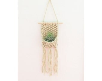 Knitted Wall Hanging with Airplant, Bohemian  Home Decor, Boho Wall Art
