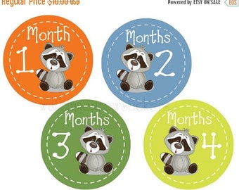Sale Month Stickers Raccoons Monthly Stickers Baby Shower Gift