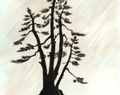 "Ink Drawing, ""Spruce"", matted, backed, ready for framing"