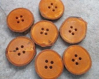 7 Beech Branch Buttons