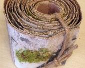 "Birch Paper Ribbon Garland, 3.25"" x 5 Yards - Free shipping inside USA"