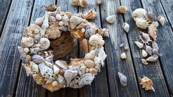Shell Wreath, Sea Shell Wreath, Beach Wreath
