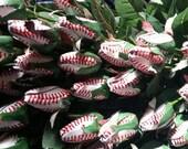 Baseball Rose Sport Bud