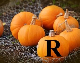 Personalized Fall Halloween Pumpkin Monogram Decals - Custom Pumpkin Decals