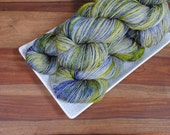 Lacewing Fly on Tendril, Merino Fingering Weight Hand-dyed Yarn
