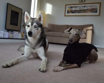 Luxury Superwash Merino Italian Greyhound Dog Sweater