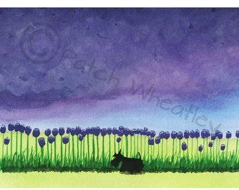 Scottie Dog Fine Art Print  Scottish Terrier #138
