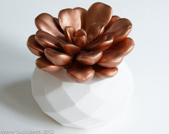 Sale! Large Copper Succulent Sculpture with Interchangeable Planter, Tabletop, Desktop Accessory, Modern Minimalist Home and Office Decor