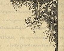 Printable Image Elegant Corner Element Download Formal Floral Design Graphic Digital Artwork Vintage Clip Art Jpg Png 18x18 HQ 300dpi No.794
