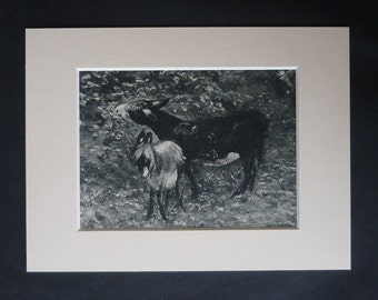 1940s Antique John Constable Print, Ass and Foal Decor, Available Framed, Donkey Art, Rural Suffolk Gift, Cornfield Wall Art, Mule Picture