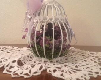 Delightful Flower Garden/Bird Cage Captured Fairy  - CF7