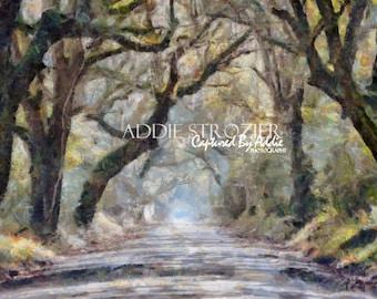 Botany Bay Road Edisto Island Beach  / Trees Moss South Carolina Wall Art Branches Canopy Print Paint