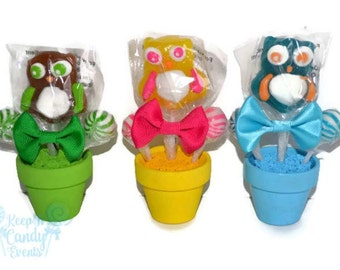 Mini Owl Lollipop Arrangement, Mini Owl Lollipop Favor, Owl Candy Favor, Birthday Party Favor, Party Bag Filler, Owl theme, Sweet 16 Favor