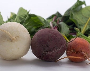 Rare Heirloom Beets Mix seeds