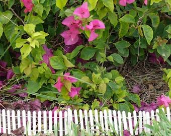 Miniature White Picket Fence Fairy Garden Accessory