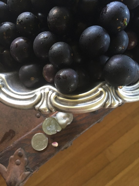 how to grow jaboticaba from seed