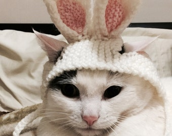 Bunny cat hat, Rabbit ears cat hat, Easter cat hat, hat for cats and small dogs, cat accessories