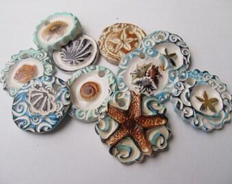beach gift tags u0026 jewelry pendants sand dollar starfish shells fish